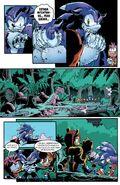 Sonic the Hedgehog 265-013