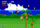 Propeller Flying Sonic 2.png