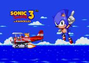 S3K Bad Ending Sonic 7