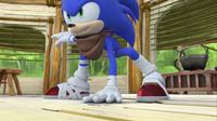 SB S1E14 Sonic ready pose