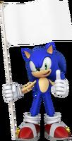 Sonic Flag