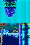 Coral Cave Act 2 04