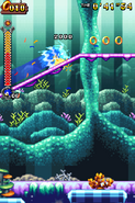 Coral Cave Act 2 08