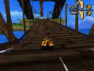 Monkey Target DS 27