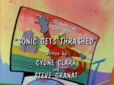 Sonic Gets Thrashed