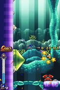 Coral Cave Act 2 07