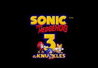 Sonic 3 & Knuckles Best Ending Sonic 2