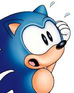 StHOSCM Sonic alarmed