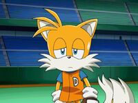 Tails31