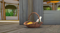 SB S1E08 Sonic's shack porch basket close