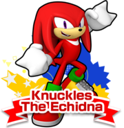 SRunners knuckles