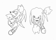 Knuckles Fights