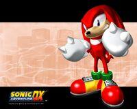 Sonic-Adventure-DX-424-1