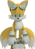 Tails 4 Tails19950