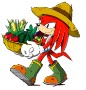 Knuckles Channel 5