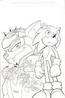 Sonic Universe 14