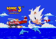 S3 Good Ending Sonic 7