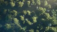 Sonic 2022 Trailer 10