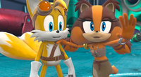 Tails and Sticks Stails Taicks