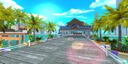 Dolphin Resort Expert