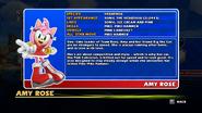 Sonic and Sega All Stars Racing bio 04