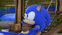 Sonic on the hammock