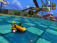 Monkey Target DS 24