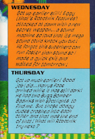 Sonic's Diary wed-thu