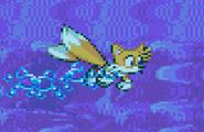 Swim Advance
