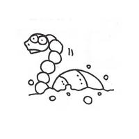 Sketch-Rexon