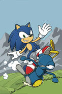 IDWSonic5CoverBRaw