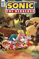 IDW Sonic The Hedgehog -2 (variant cover)