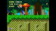 Mushroom Hill 1