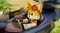 Tails in his plane