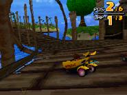 Monkey Target DS 15