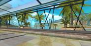 FR Background Dolphin Resort 2