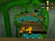 Treetops DS 17