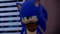 SB S1E02 Sonic annoyed