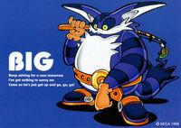 SA Big Original
