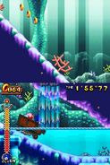 Coral Cave Act 2 26
