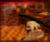 Regal Ruin ikona.png