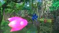 Tropical Jungle 7