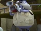 Walrus Camera Man