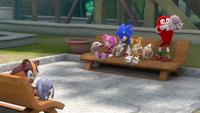 SB S1E37 Team Sonic rabbits