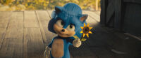 SonicMovie Flower