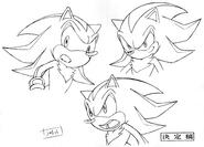 Sonic X koncept 077