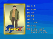 Sonic X karta 33