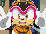 Charmy Fly
