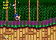 Sonic2-ElementyBeta-Wood-Finał