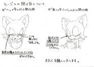 Sonic X koncept 056